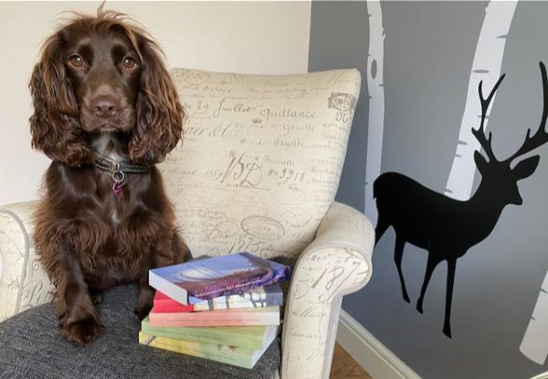 Coco the Touring Tales Books spaniel dog. Five Things Friday book list