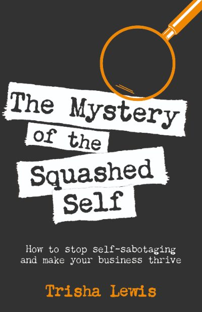 Book Blitz The Mystery of the Squashed Self