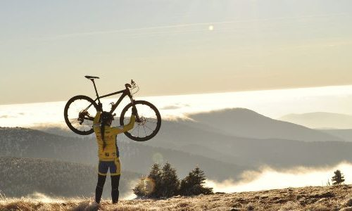Banner Best Books for Cycling Fans