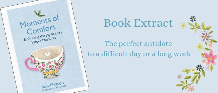 Book Extract Moments of Comfort